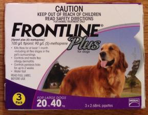 Dog Heartworm Flea Amp Intestinal Worm Control Walkerville Vet