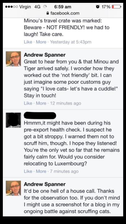 message about scruffing cats