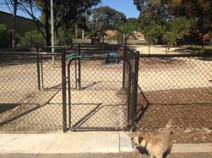 fenced area in Sam Johnson Reserve Puppy Park