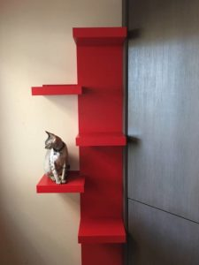IKEA cat ladder