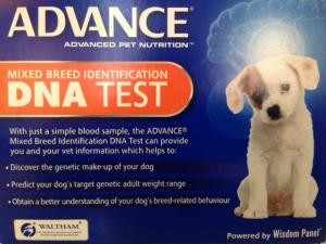 advance DNA test