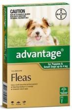 advantage for ferret fleas