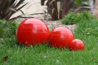 Staffie & Enduro Balls
