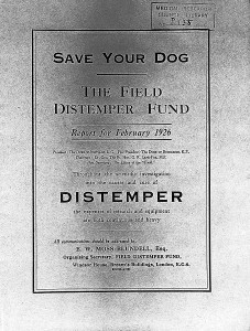 distemper vaccine development