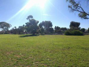 whyalla dog park