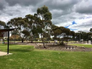 gawler dog park