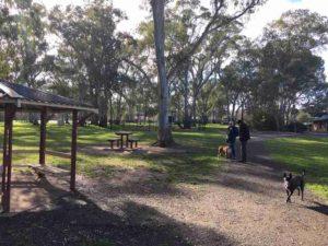 ridgehaven dog park