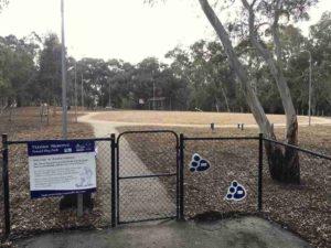 Flinders Park Dog