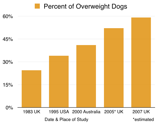 prevalence overweight dogs