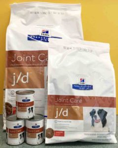 dog arthritis food
