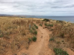 adelaide coastal path