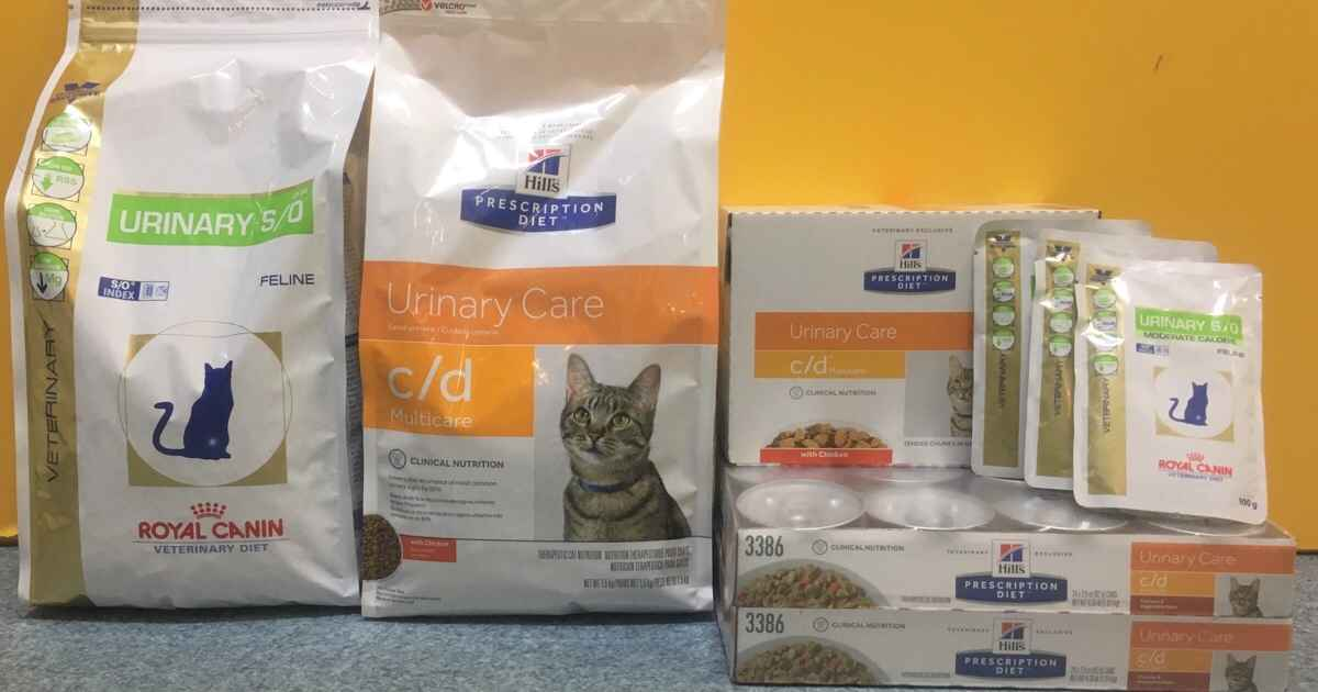 urinary cat foods