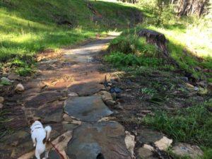 adelaide aqueduct walk