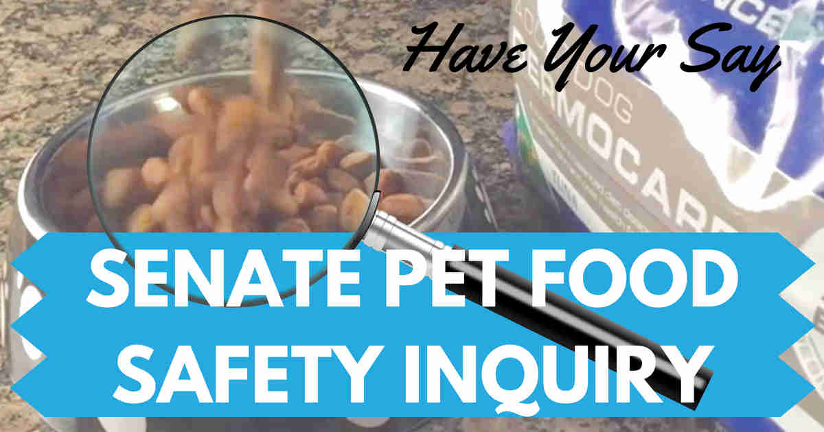 pet food inquiry