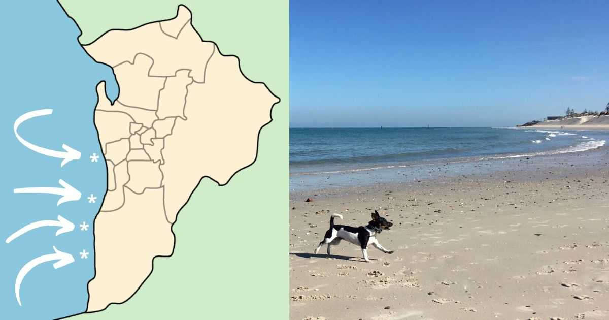 adelaide off leash beaches