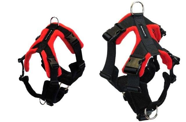 perfect fit harnesses