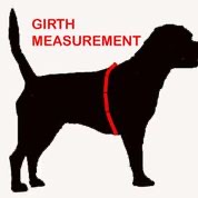 perfect fit harness measurement