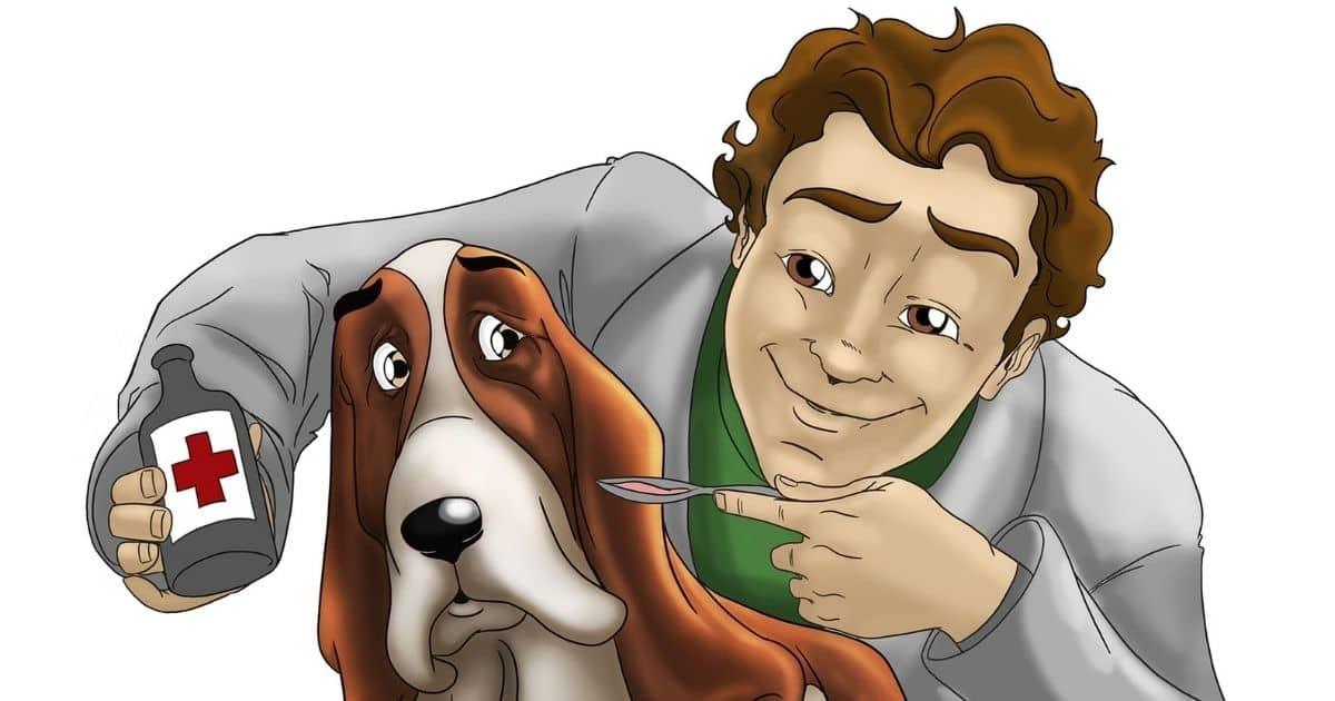 dog getting medicine